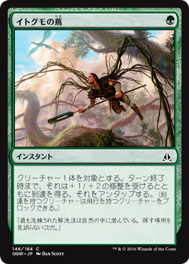 イトグモの蔦